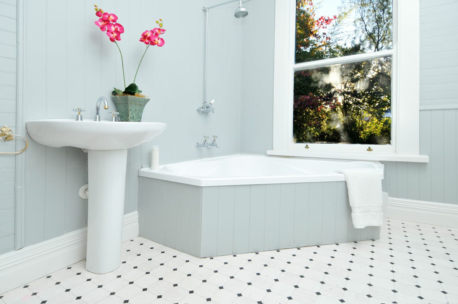 Bathroom Interior Painting Nelson